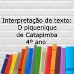 Interpretação de texto: O piquenique de Catapimba – 4º ano